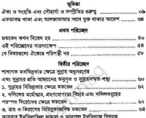 উম্মাহর ঐক্য পথ ও পন্থা pdf বই ডাউনলোড
